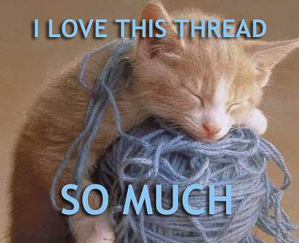 cat - i love this thread so much-2.jpg