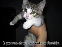 cat - eats your family-18.jpg