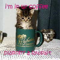 cat - in coffee lawsuit-10.jpg